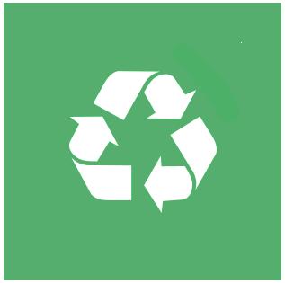 Newsedan ecológica